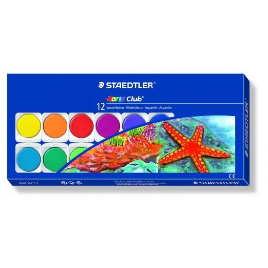 12 Water colour paint